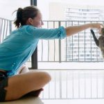 Cat Training – The Truth Revealed