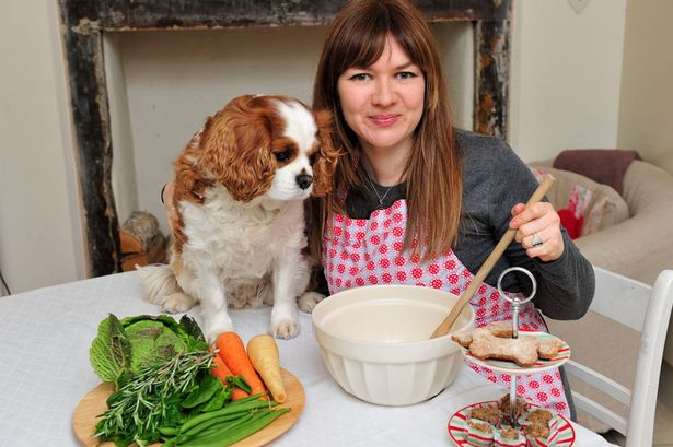 Feed your dog organic and cooked food